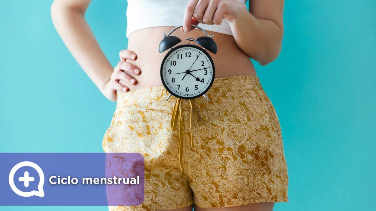 ciclo menstrual básico de 28 días. menstruación, días fértiles y ovulación. fases.
