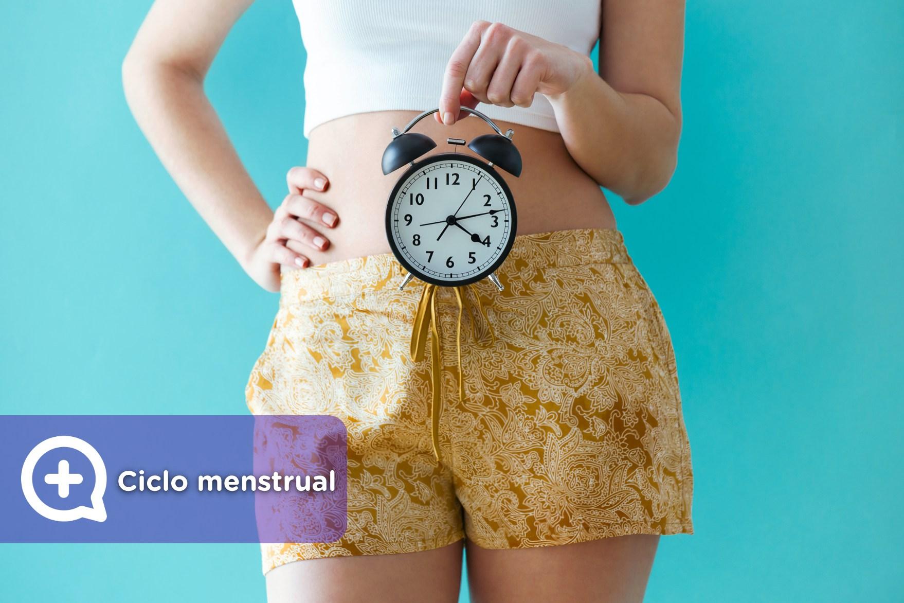 Dias fertiles ciclo menstrual 28 dias