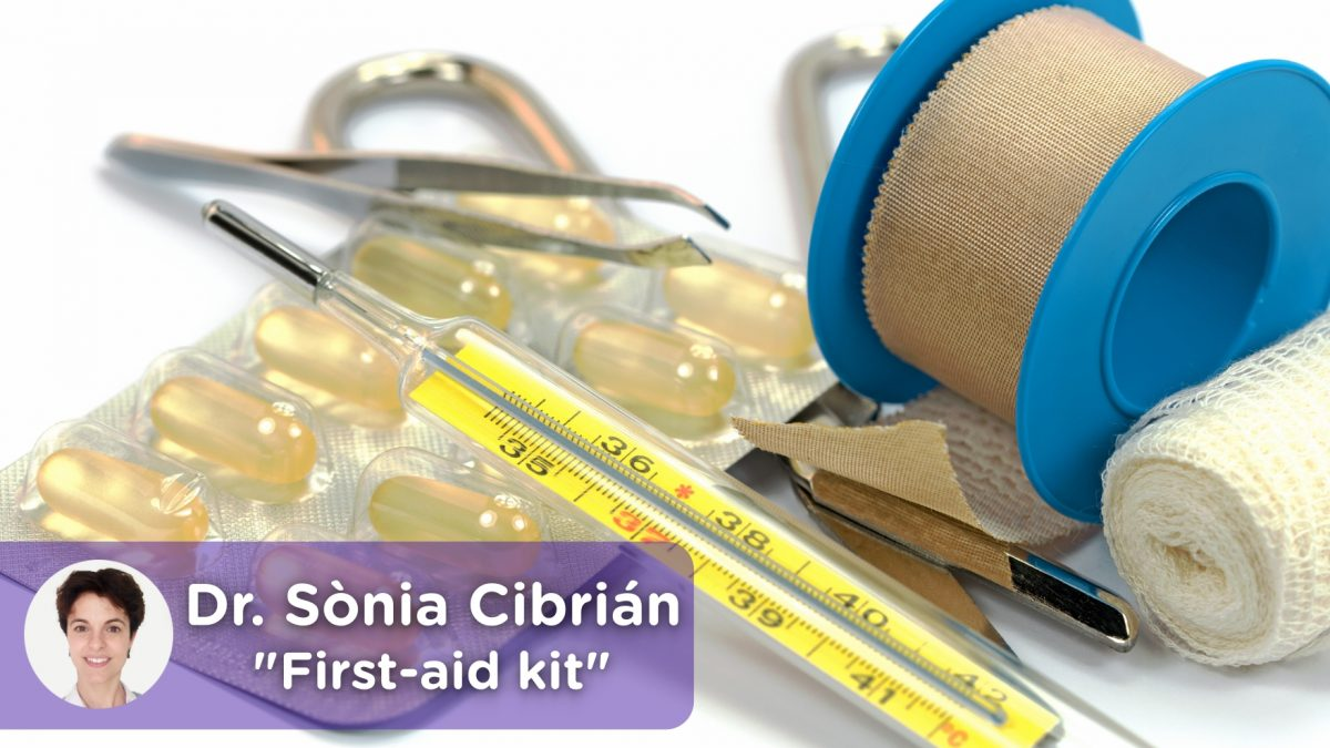 First-aid kit, analgesics, antipyretics, thermometer, tape, pills, emergency kit, scissors.