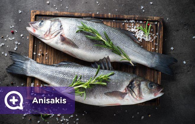 Anisakis, pescado. Nutrición. Mediquo, tu amigo médico. Chat médico.