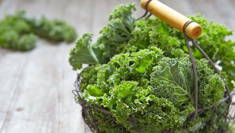 mediquo kale, superalimento, nutrición, dieta saludable, mediquo, tu amigo médico, chat médico. Sònia Cibrián.