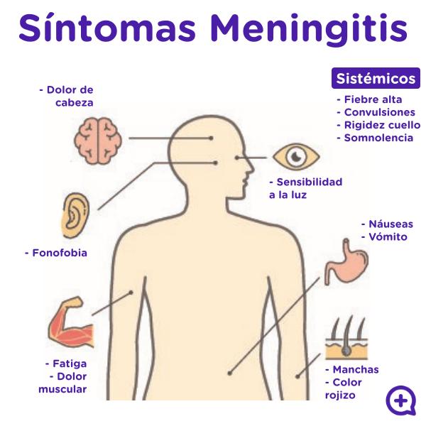 mediquo meningitis, síntomas, enfermedad, manchas en la piel, vaso de cristal. Mediquo Tu amigo médico, Chat médico.