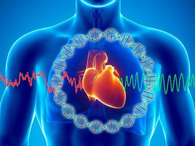 mediquo Enfermedad Cardiovascular, Síndrome metabólico, hipertensión, diabetes, infarto. Laura Villalta, mediquo, tu amigo médico. Chat médico. Salud. Nutrición.