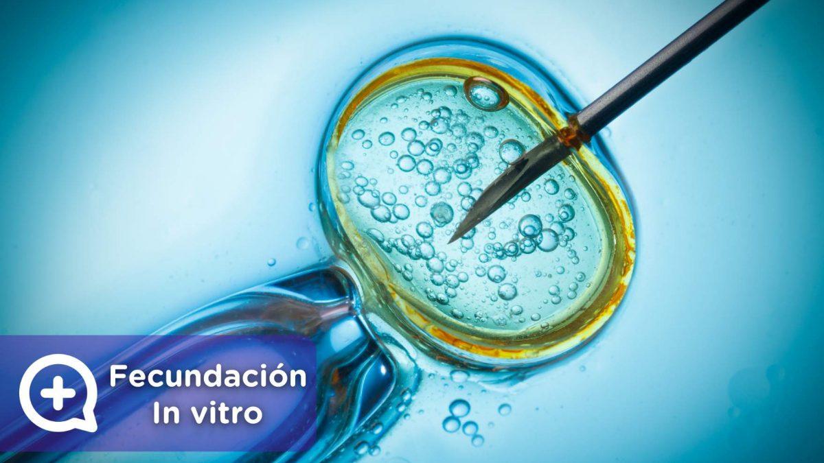 fecundación in vitro, embarazo, espermatozoide, óvulo. Mediquo, ginecología. fertilización. Mediquo.