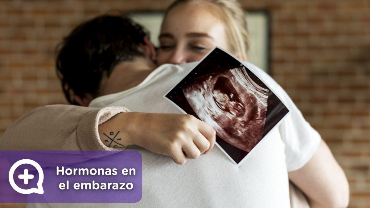 Hormonas que intervienen en el embarazo. Ginecología. Mujer. Salud. Mediquo.