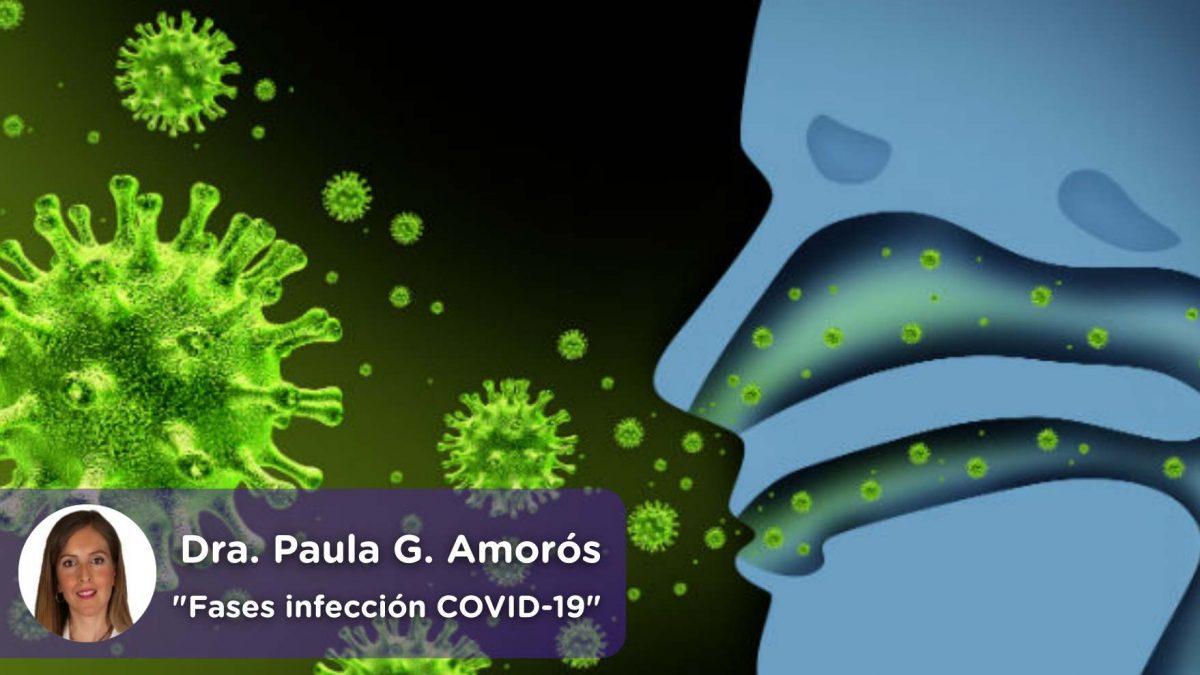 Coronavirus, covid19, fases, infección, virus, mediquo, Paula García Amorós, salud, telemedicina, app.