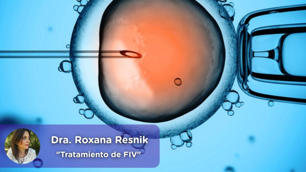 Tratamiento de Fecundación in Vitro FIV, mediquo, ginecología, obstetra, embarazo, Roxana Resnik, Salud.