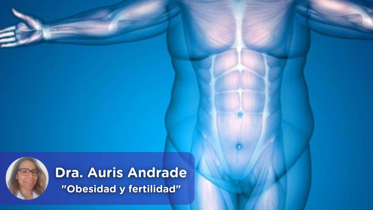 Obesidad y fertilidad, mediquo, salud, nutrición, embarazo, peso, dieta, vida saludable.