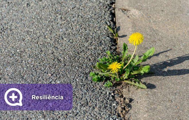 resiliência, resiliente, pessoas, psicologia, mediQuo, saúde mental, saúde
