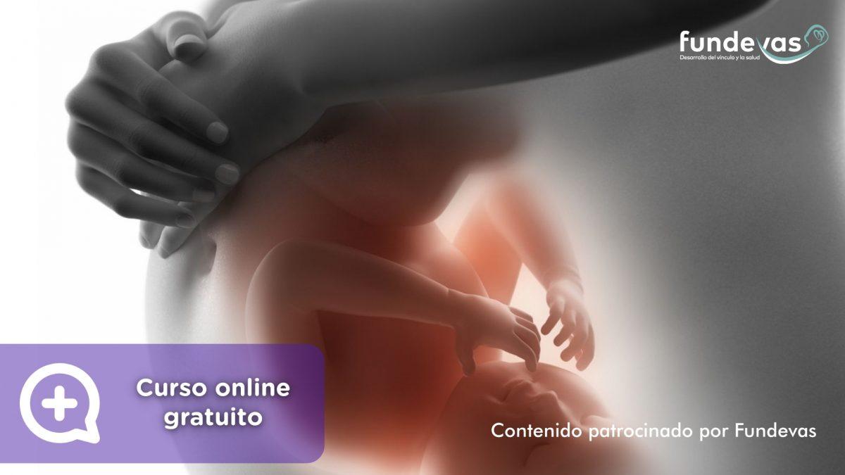 Curso online gratuito para embarazadas y parejas. La importancia de los 1000 primeros días. MediQuo. Asociación Fundevas. Salud, embarazo, ginecología