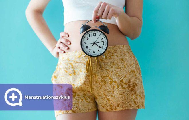 28-tägiger grundlegender Menstruationszyklus.. Menstruation, fruchtbare Tage und Eisprung. Phasen.
